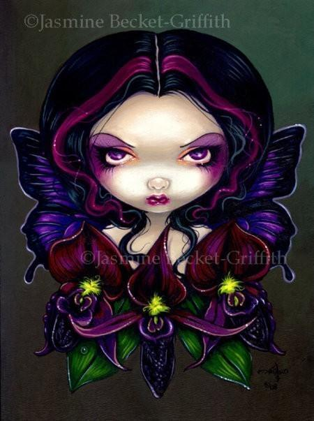 Black Orchid Fairy