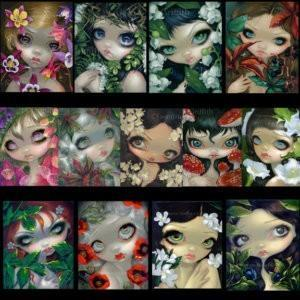 poisonous beauties set of 13